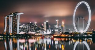 Travel tips for food lovers in Singapore