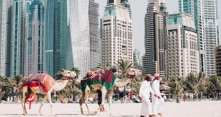 5 Tips for the Ultimate Foodie Experience in Dubai